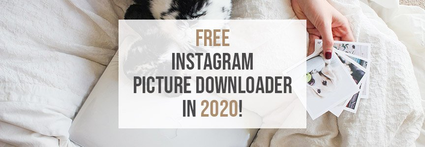 Free Instagram Picture Downloader in 2020! [No Loss In Quality]